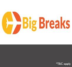 Big breaks logo