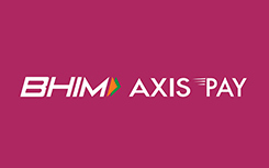 BHM-axis-pay